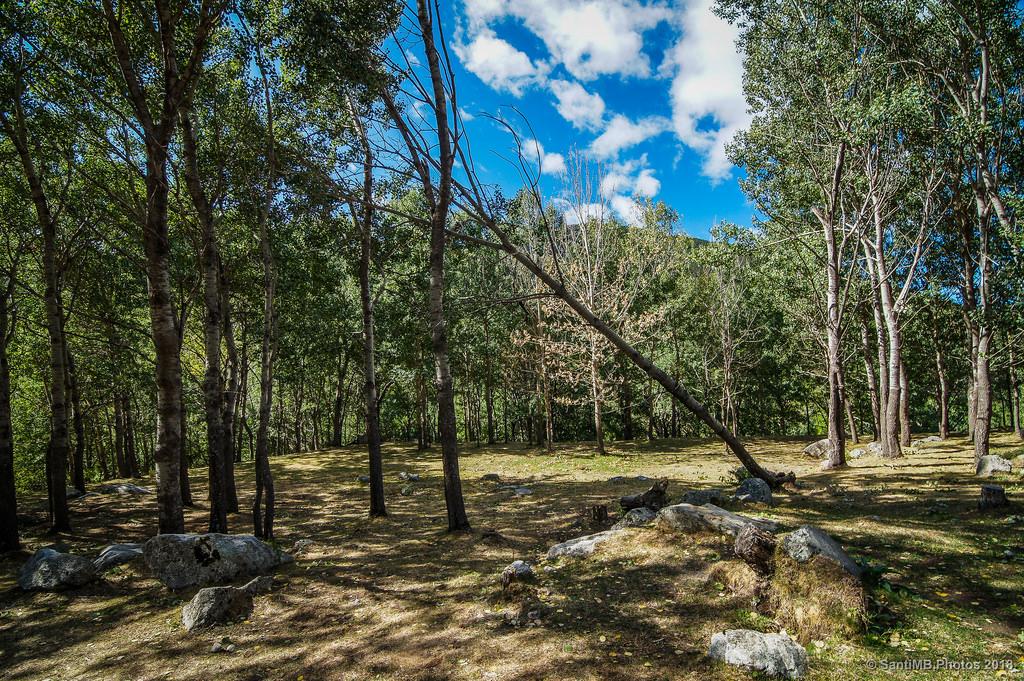 La riera de merl s un paraje natural capaz de embrujarte for Piscinas naturales montseny